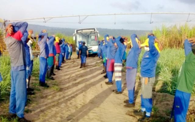 Ginástica Laboral no Campo do Açúcar Alegre